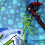 Sassi und Fisch LINGULINO
